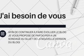 sondage blog féminin belge