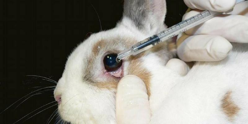 produits cosmétiques testés sur les animaux